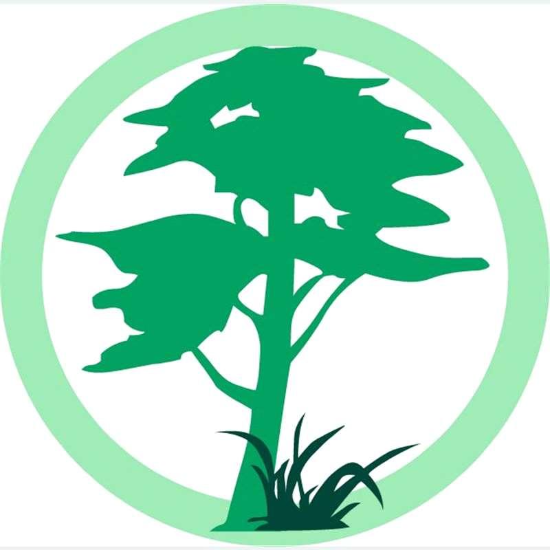 C v arico forest sl especialistas en jardiner a - Jardineria la font ...
